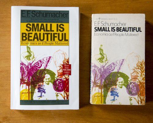 Book review: SMALL IS BEAUTIFUL – NHỎ LÀ ĐẸP